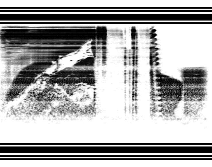 phonopaper_code-3